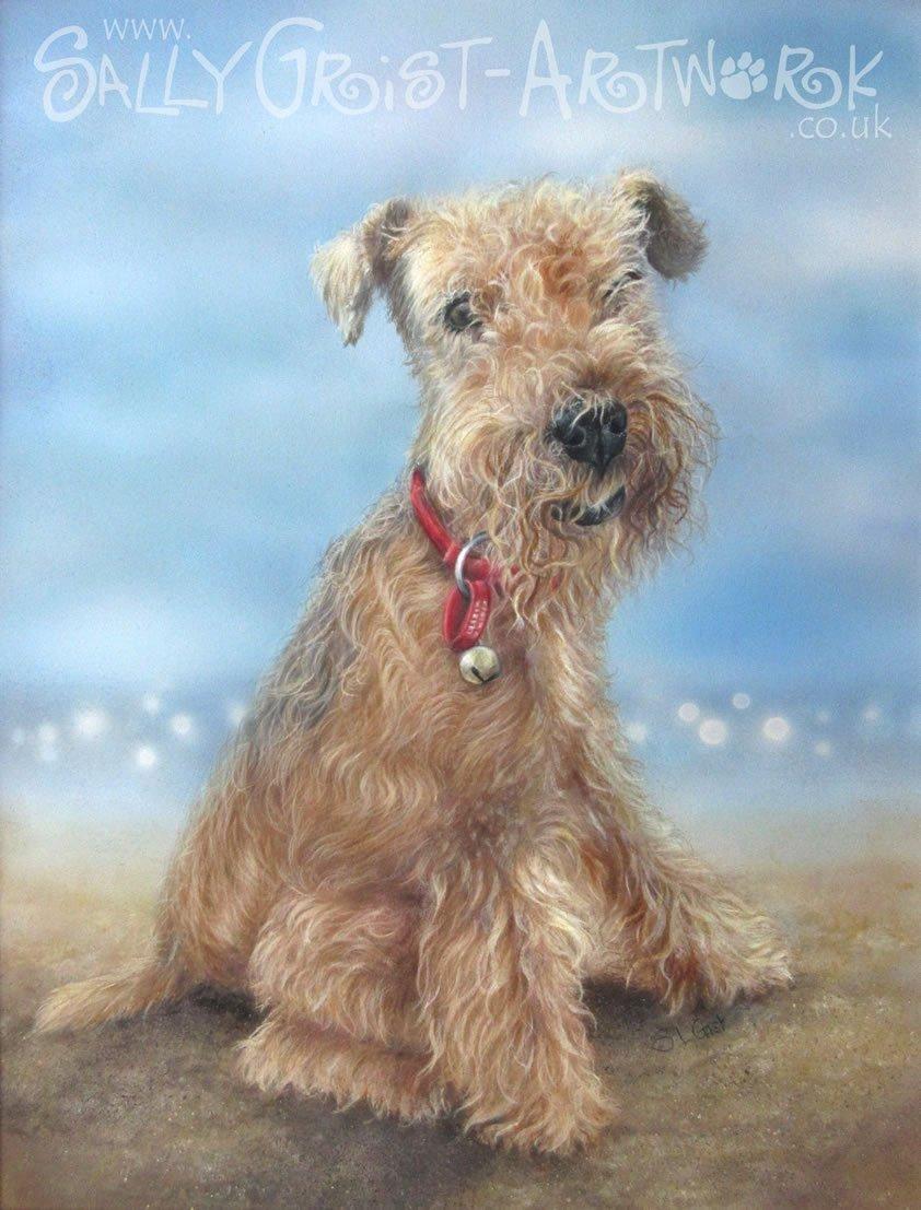 pet portrait, pet portrait Artist Sally Grist